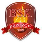 Brzozowskie Stowarzyszenie Koszykówki