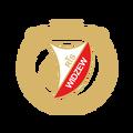 CosinusMED Widzew Łódź