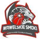 TS Wisła Platinium Kraków