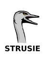 Strusie