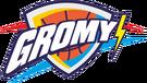 Akademia Koszykówki Młodzieżowej Gromy Nowy Tomyśl