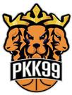 Integra PKK 99 Pabianice