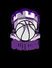 Świecki Klub Koszykówki