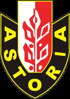 Enea Abramczyk Astoria Bydgoszcz